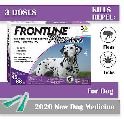 Frontline Plus for Dogs Large Dog Flea and Tick Treatment, 3 Doses