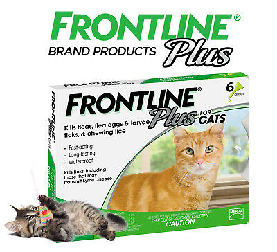 Frontline Plus for Cats and Kittens Flea and Tick Treatment, 6 Doses