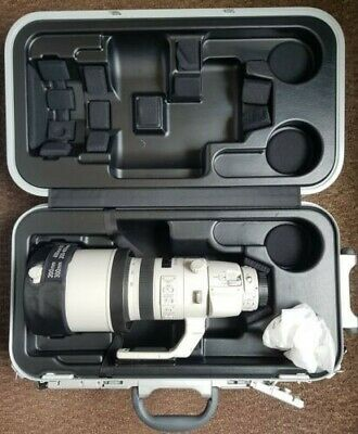 Canon EF 200-400mm f/4 L IS