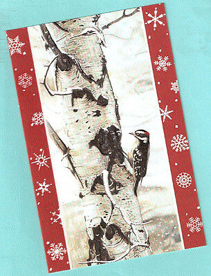 Downy Woodpecker Birch Tree Embossed Christmas Cards Box of 16