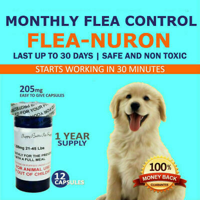 1 Year Supply MONTHLY Flea Control For Dogs 21-45 Lbs. 12 Capsules 205 Mg PB
