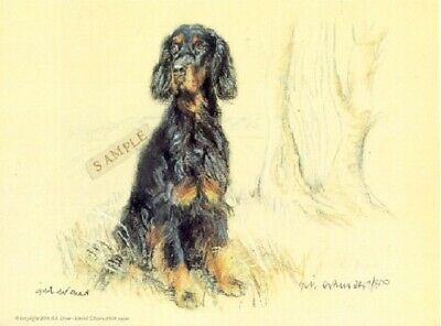 Gordon Setter Limited Edition Print by UK Artist Gill Evans
