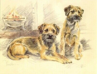 Border Terrier Limited Edition Print by UK Artist David Thompson