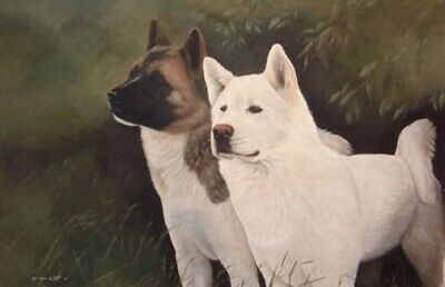 Akita Limited Edition Art Print Two of a Kind by Steven Nesbitt