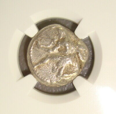 440-400 BC Cilicia, Soloi Amazon / Grapes Ancient Greek Silver Stater NGC VF