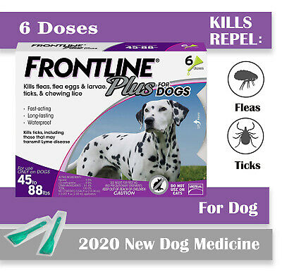 FRONTLINE Plus Flea and Tick Treatment for Large Dogs (45-88 lbs), 3 Doses