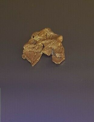 Gold Nugget 0.59