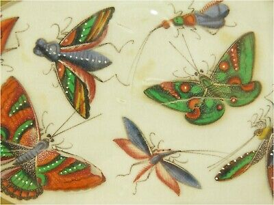 Antique 19th century Chinese painting on pith rice paper butterflies & insects