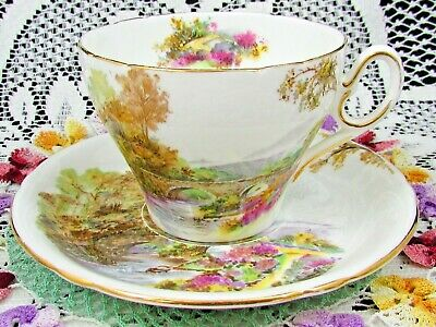 Shelley Heather Pattern Meadow River Floral Tea Cup And Saucer