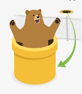 TunnelBear VPN Security Account Download 1 Year Unlimited Worldwide Subscription
