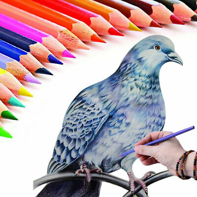 24 Colors Oil Based Sketch Painting Pencils Set Fine Artist Art Drawing Tool D