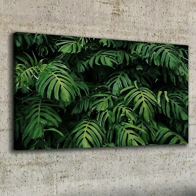 Canvas Print 100x50 Tropical Leaves Monstera Picture Wall Art Framed Decor