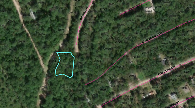 Property for Sale! 0.40 Acres in Trinity County, TX No Reserve