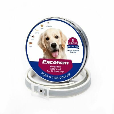 Flea and Tick Collar for Dogs With Adjustable Waterproof 6 Month Protection