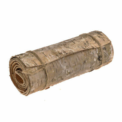 Natural Birch Bark Continuous Roll 120cm Long x 20cm Wide