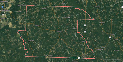 Property for Sale! 0.25 Acres in Dallas County, AR No Reserve