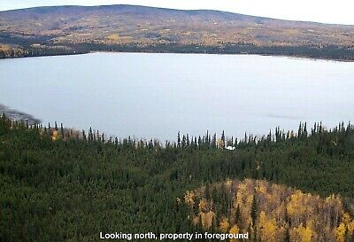 3.86 Acres Alaska Lake Land - High Bid Is Down Payment - Zero Interest Financing
