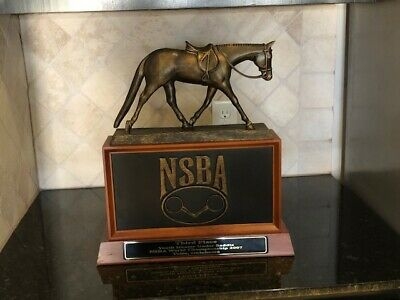 GREAT National Snaffle Bit NSBA 2007 World Champion 3rd Place Horse Trophy