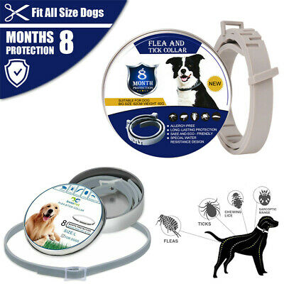 Adjustable Anti-Flea&Tick Neck Collar Strap for Dog Cat Pet 8 Months Protection