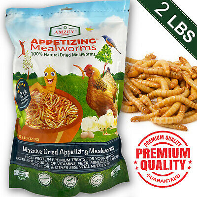 2 LB Dried Mealworms High Protein Bulk Food For Chicken,Bird,Turtle,Fish,Duck