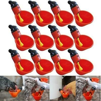 Feed Poultry Water Drinking Cups Plastic Automatic Drinker Plastic Chicken Hen