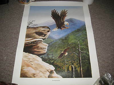 From Indian Fort, Eagles in Flight print, nice