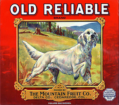 *Original* OLD RELIABLE Pointer Dog Colorado Apple Crate Label NOT A COPY!!