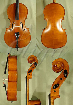 New Student 7/8 'gems 2' Antiqued Cello For Sale Code: C2640