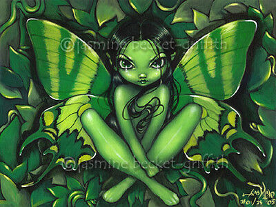 Green Butterfly Fantasy fairy gothic art CANVAS PRINT Jasmine Becket-Griffith