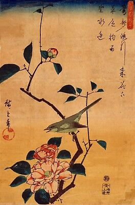 Repro Japanese Print by Hiroshige 'Camellias and Bush Warbler'