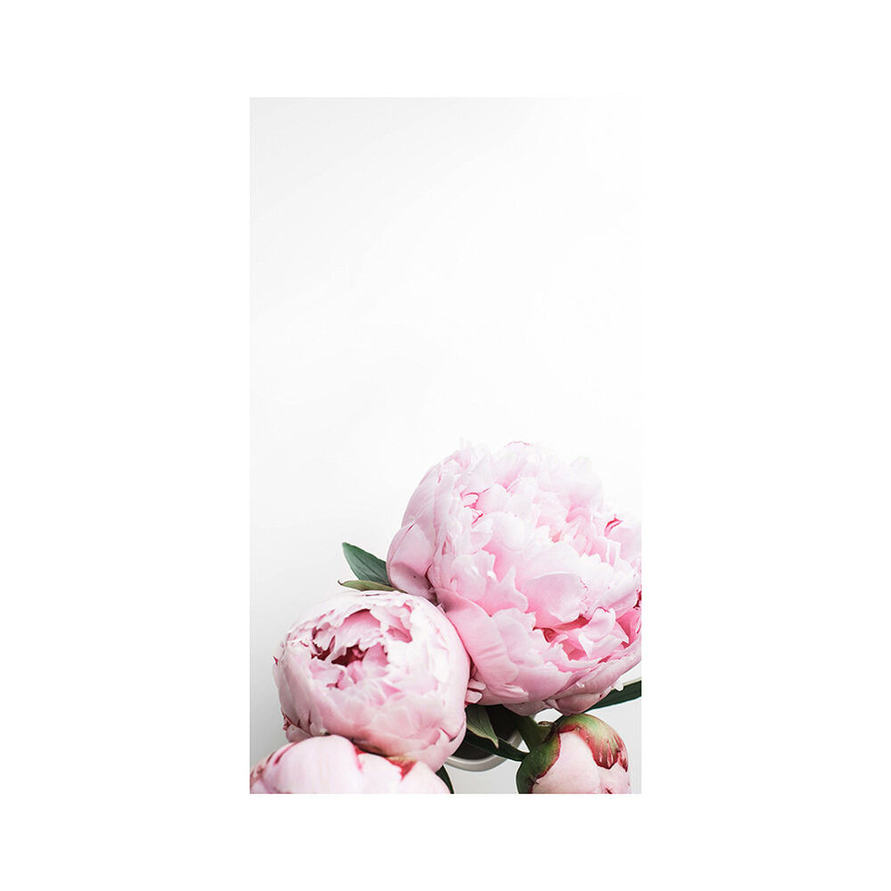 Unframed Modern Peony Art Canvas Painting Picture Print Home Wall Decor Opulent 10