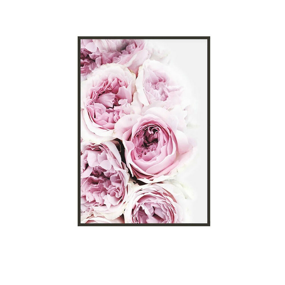 Unframed Modern Peony Art Canvas Painting Picture Print Home Wall Decor Opulent 3