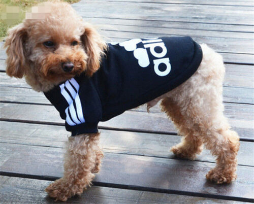 New XS-3XL Pet Winter Coat Dog Warm Clothing Casual Cat Puppy Hoodie Sweater 10