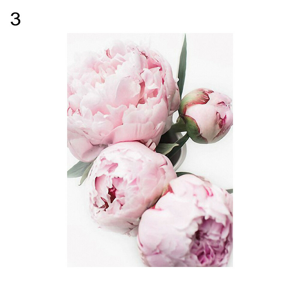 Unframed Modern Peony Art Canvas Painting Picture Print Home Wall Decor Opulent 9