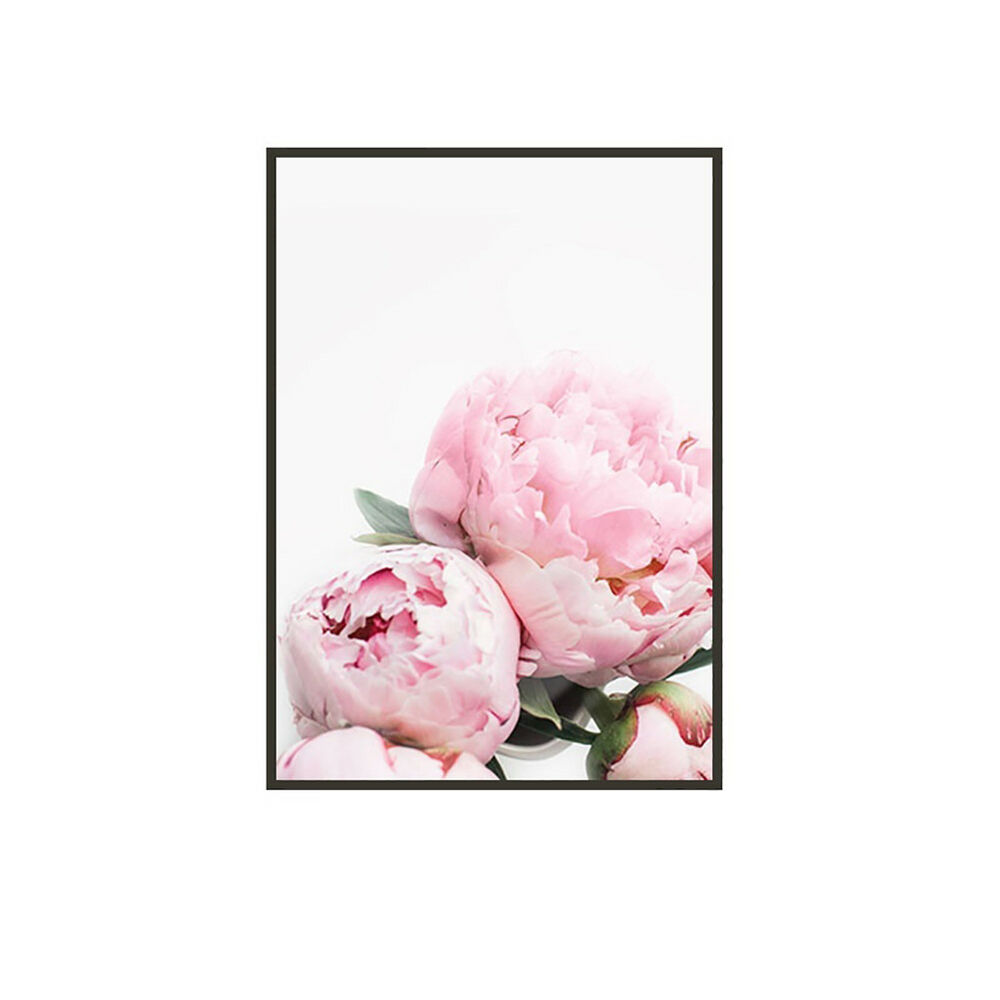 Unframed Modern Peony Art Canvas Painting Picture Print Home Wall Decor Opulent 4